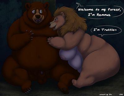 Beware Of Bear