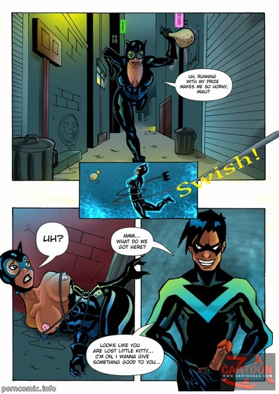 Justice League- Nightwing and Catwoman